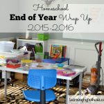 Homeschool End of Year Wrap Up 2015-16