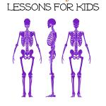 Skeletal System Lessons for Upper Elementary Students