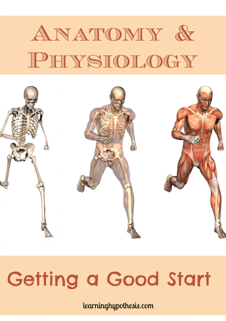 Anatomy & Physiology: Getting a Good Start.