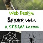STEAM Week:  Spider Webs