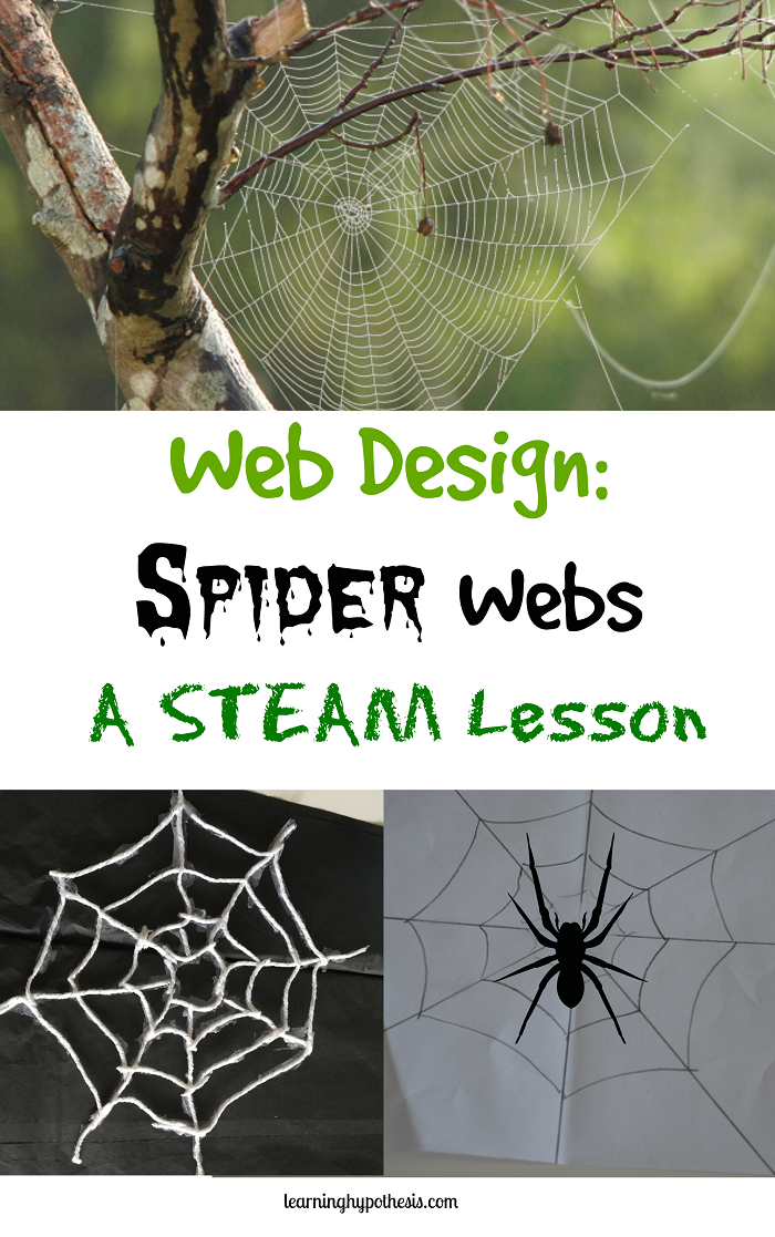 STEAM Week:  Spider Webs