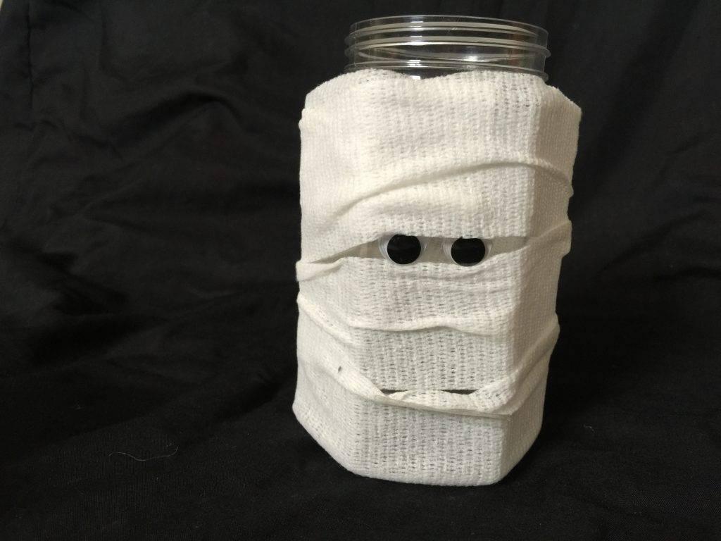 Where's My Mummy? book and craft