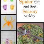 Spider Sifting and Sorting a Halloween Sensory Bin