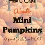 Mini Pumpkin Carving!