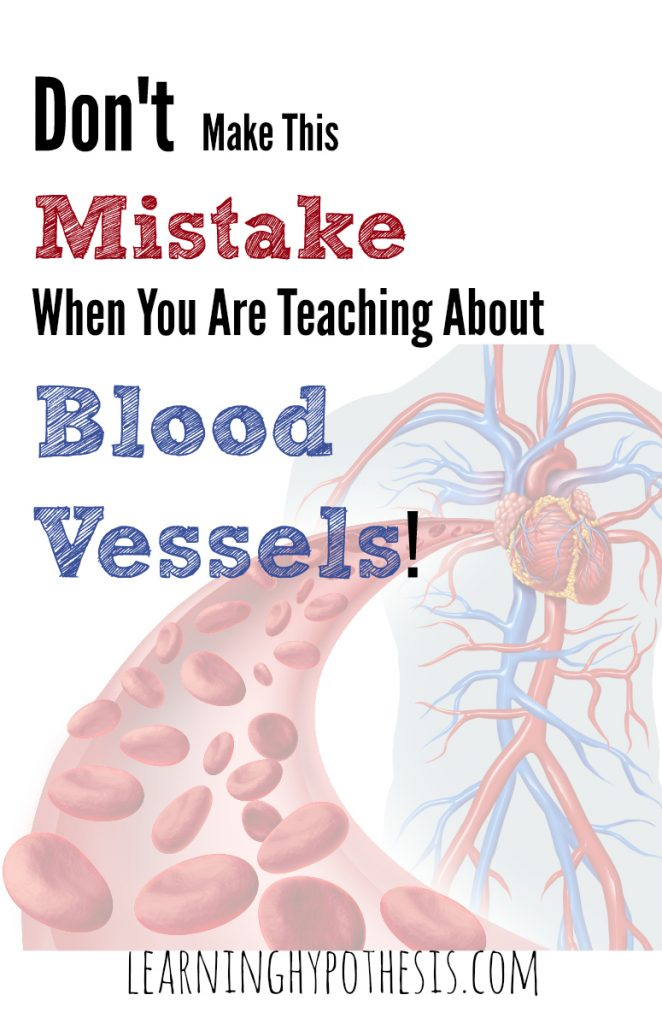 Don't Make this Mistake When Teaching About Blood Vessels!