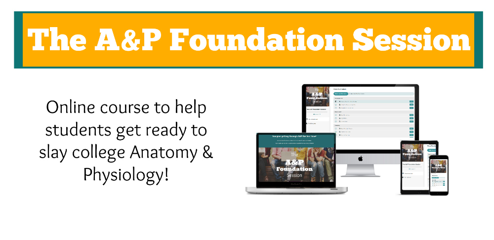A&P Foundation Session