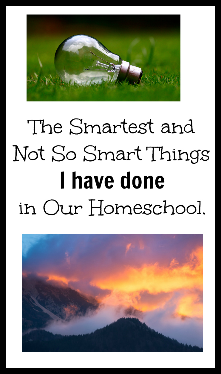 The Smartest and the Not So Smart Things I have Done in Our Homeschool.