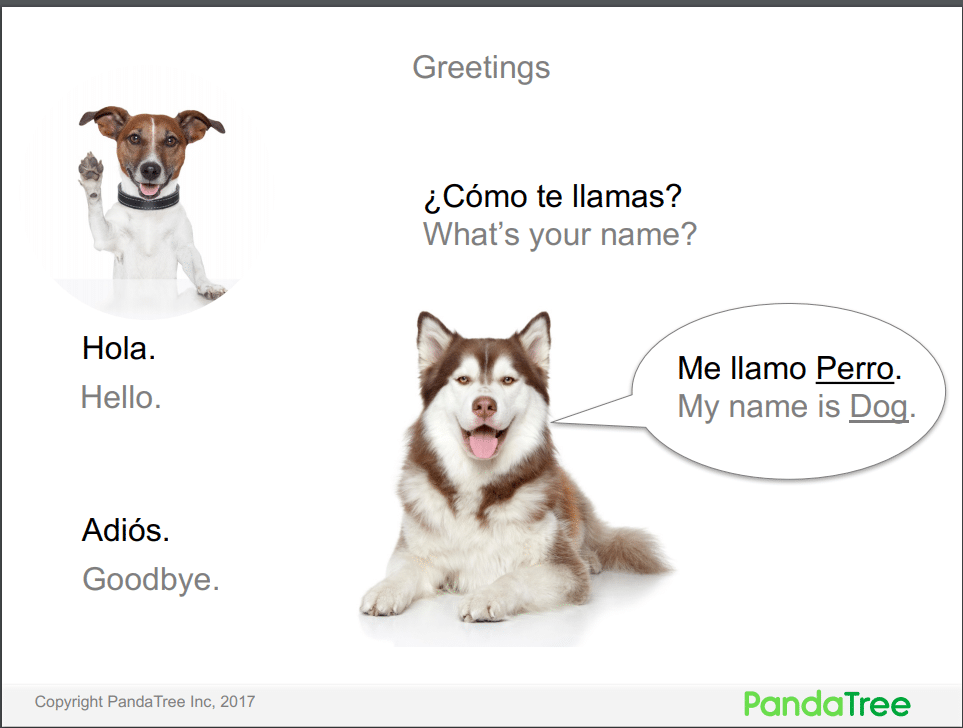 Spanish Lessons for Kids. PandaTree.com online tutoring services. One-on-one live tutors.