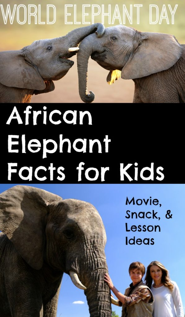 African Elephant Facts for Kids.  Preparing for World Elephant Day.