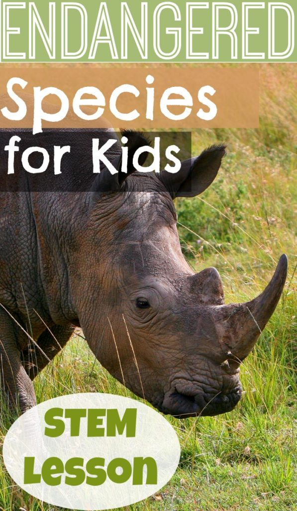 Endangered Species for Kids: A lesson on how we protect endangered species.