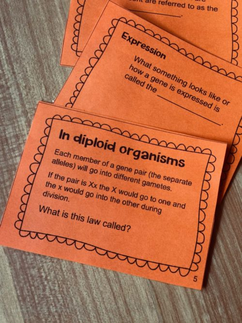 Task Cards for studying
